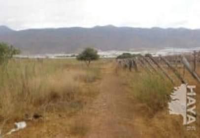 Terreny a El Ejido