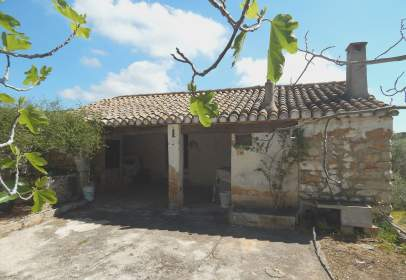 Rural Property in Canor