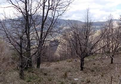Rural Property in calle Pago de La Umbria