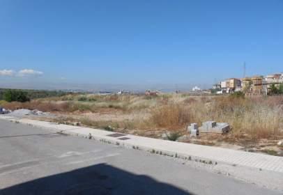 Terreny a Avenida Cerro Alfonso
