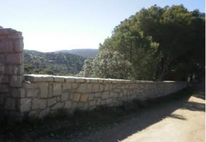 Rural Property in calle Cuestas Viejas