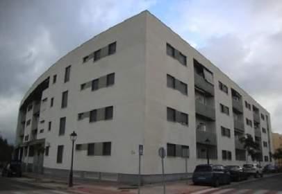 Promoción de tipologias Vivienda en venta BARRIOS, LOS Cádiz