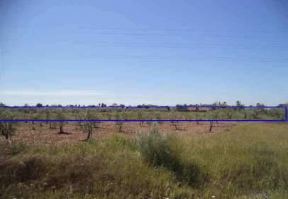 Promoción de tipologias Terreno en venta ARRECIFE, EL Córdoba
