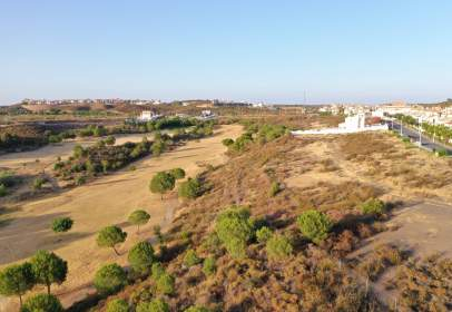 Land in  Costa Esuri,  Sn