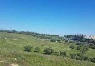 Rural Property in Hacienda de Guzman Poligono 1,  Sn