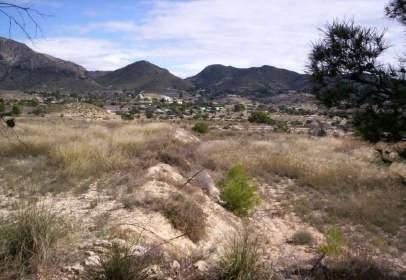 Promoción de tipologias Terreno en venta BUSOT Alicante