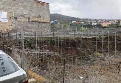 Terreny a calle del Farrobillo,  4