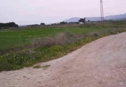 Promoción de tipologias Terreno en venta VILLENA Alicante