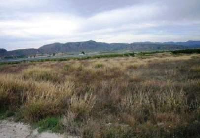 Rural Property in  los Vergeles