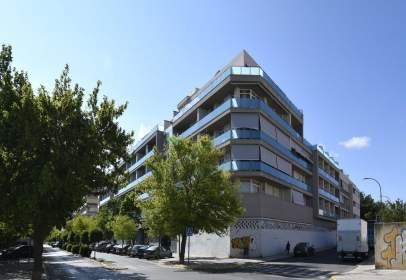 Apartament a  Jose Hernandez de La Asuncion,  23